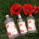 Gamme coquelicot // DURANCE