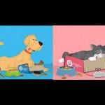 [Concours] Faites plaisir à votre animal de compagnie ! Gagnez une Woufbox ou une Miaoubox ! [CLOS]